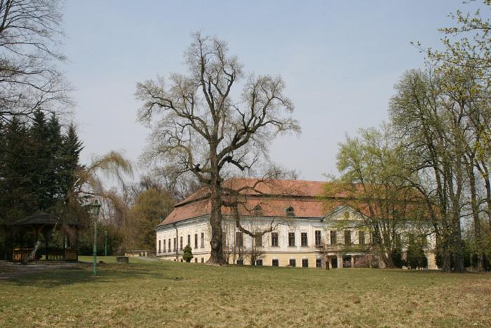 A garden party to celebrate Marie von Ebner-Eschenbach